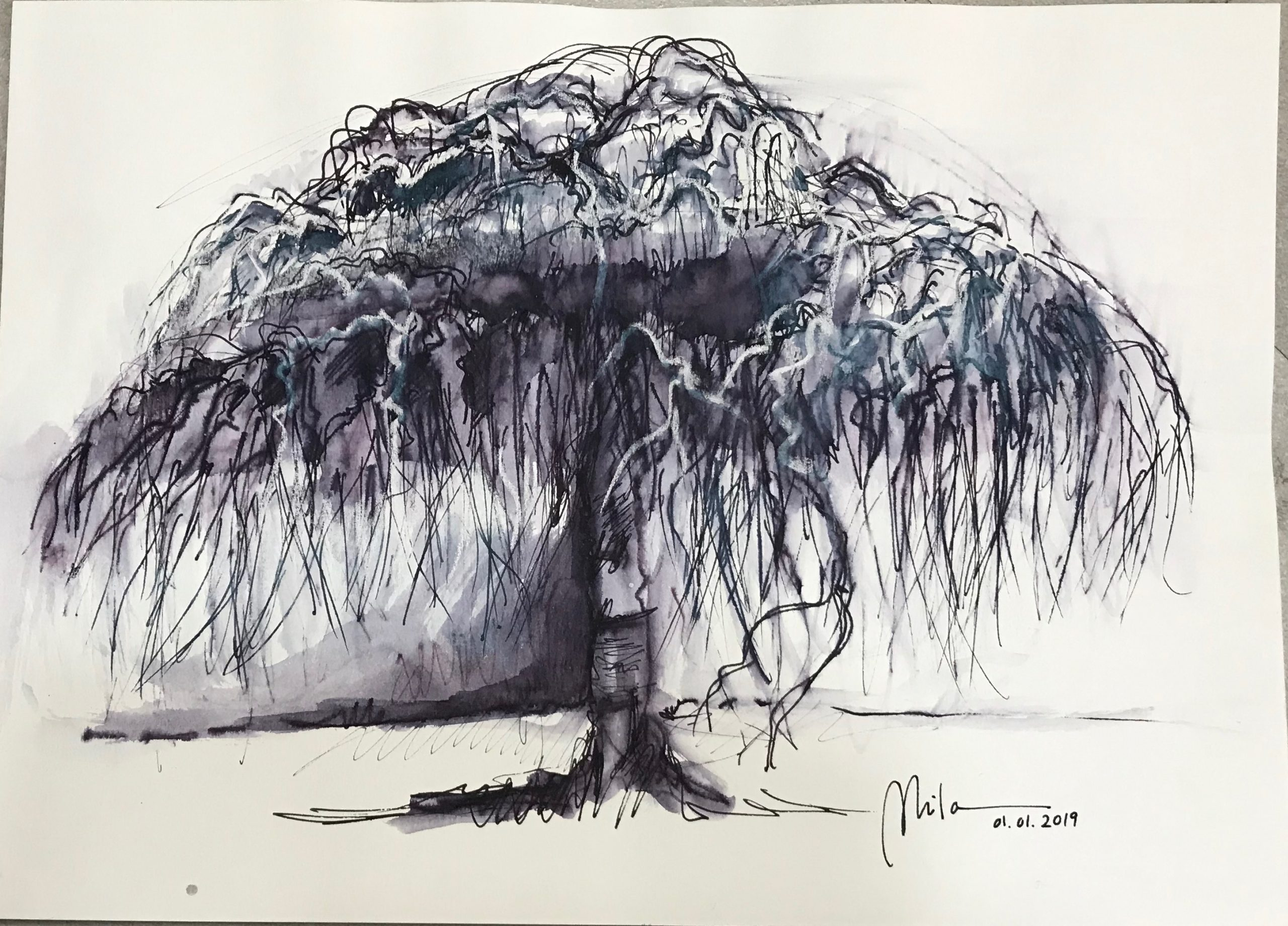 ● SAUCE LLORÓN – WEEPING WILLOW (SOLD)